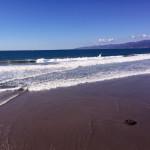 The Venice Whaler – A Fabulous Beach Side Brunch
