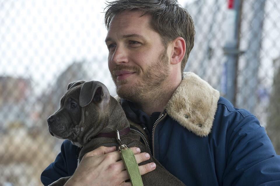 "Friday Favorites: May Day, May Day! / Tom Hardy in ""The Drop"""
